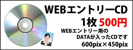 webエントリーデータ 1枚500円